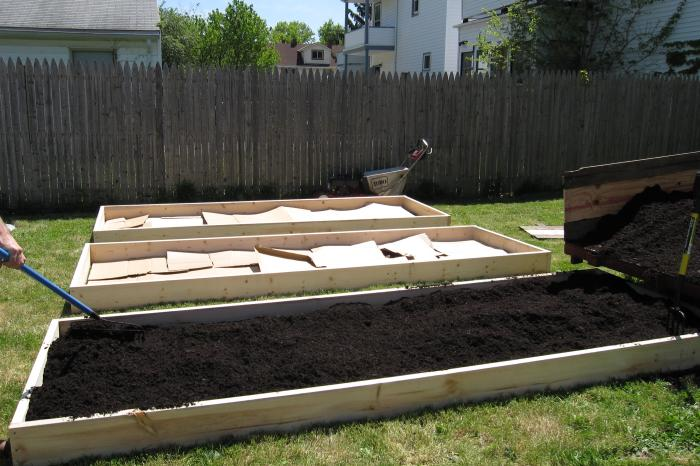 filling the raised beds
