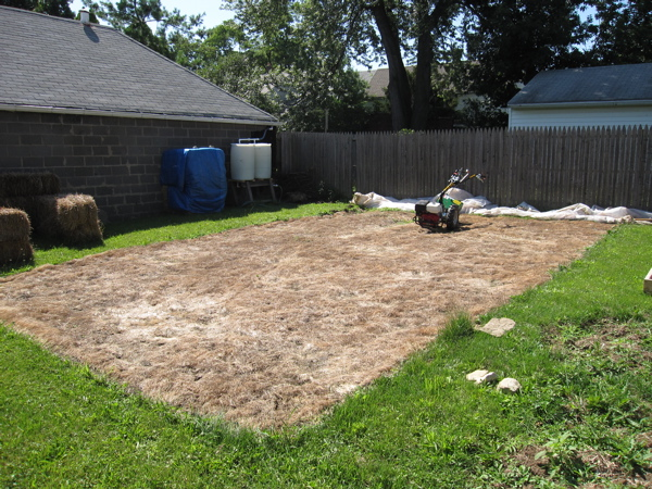 Before - 600 sq ft of land that we covered with plastic to kill the grass