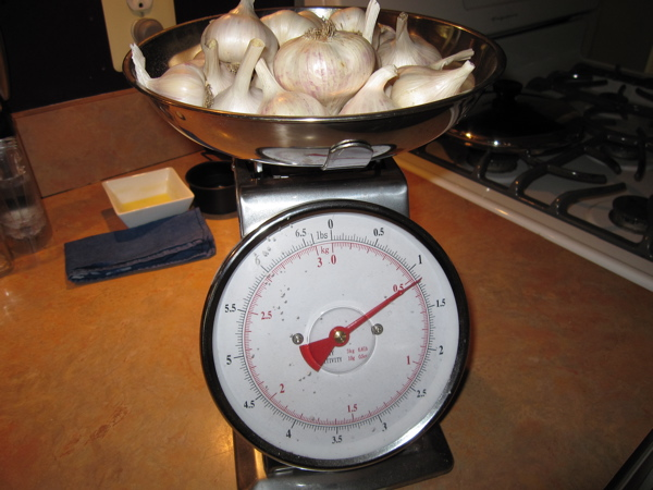 over a pound of garlic!