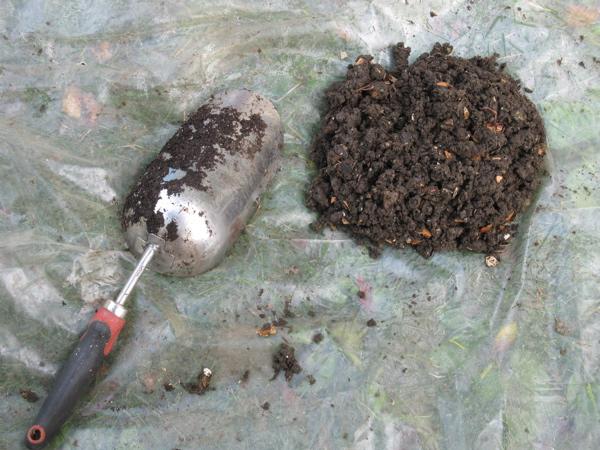 harvesting worm poop