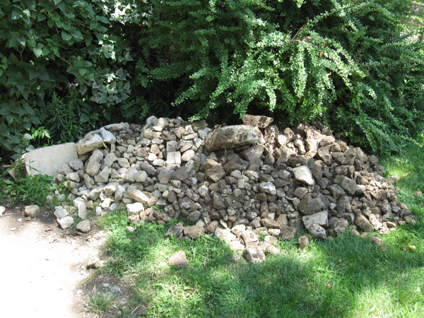 what we've been pulling out of the ground - lots of ROCKS!