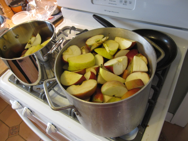 This is a 12 qt. saucepan full of apples.