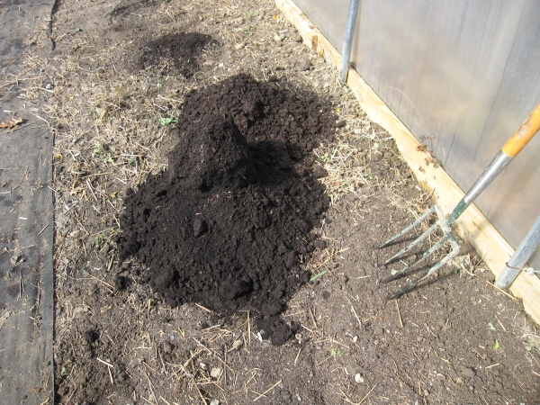 Adding compost to the hoop house - black gold!