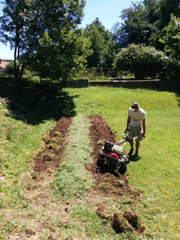 We used the rotary plow to throw the dirt on top.